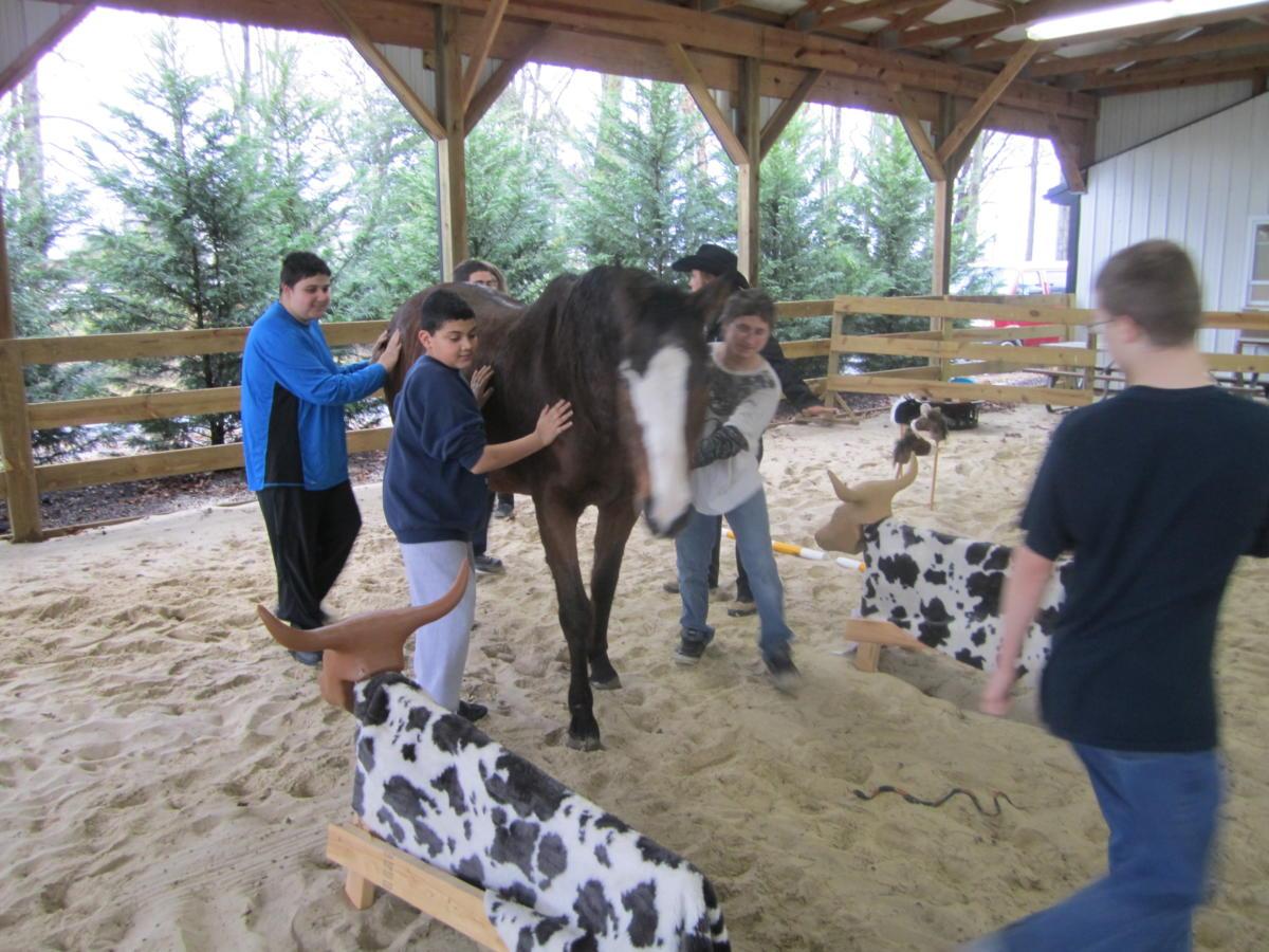 Equine Facilitated Learning EFL (41)